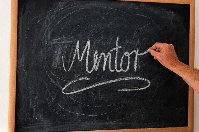 money mentor
